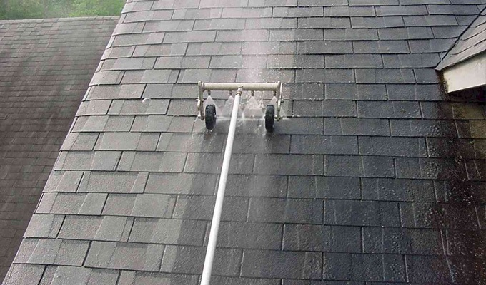 moss removal roof
